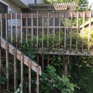 Overgrown Deck Before
